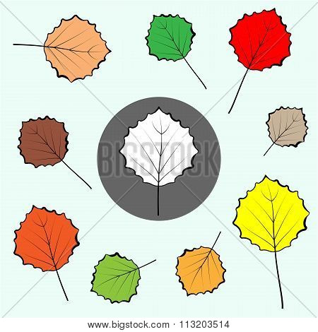 Poplar coloured leaves icons set. Leaf sign icon. Botany symbol. Circle grey button with autumn leav