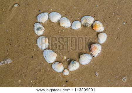 Heart From Cockleshells Lies On A Sandy Beach