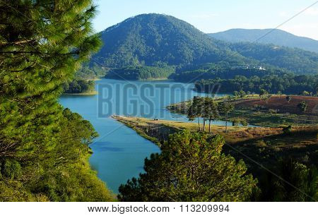 Dalat, Vietnam, Eco Travel, Pine Forest, Da Lat