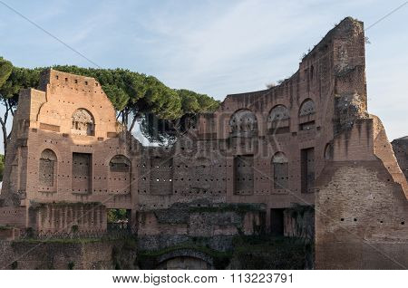 Ruins On The Palatine Hill