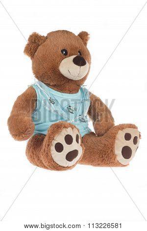 Teddy Bear With Blue Shirt, Isolated