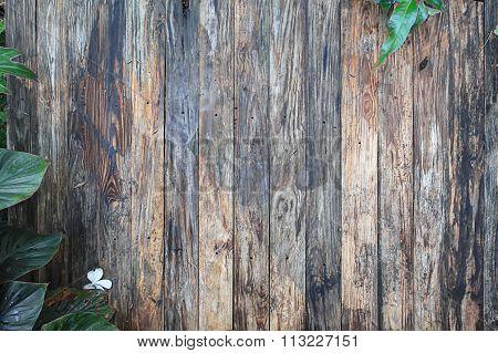 Wooden Garden