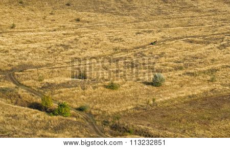 The Steppe In The Twilight And Cart On The Off Road
