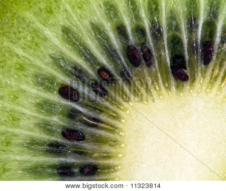 slice of kiwi saturated colors