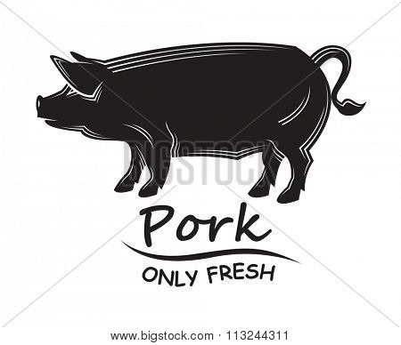 monochrome illustration with silhouette of the pig