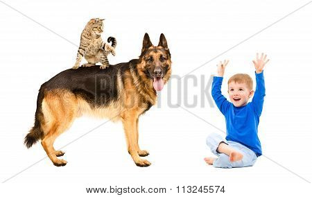 Happy boy playing with dog and cat