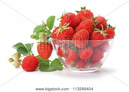 Sweet Fragrant Strawberries