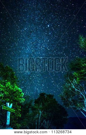 The stars at thailand