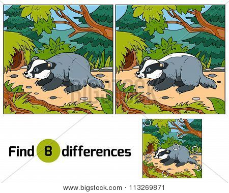 Find Differences, Game For Children (badger And Background)