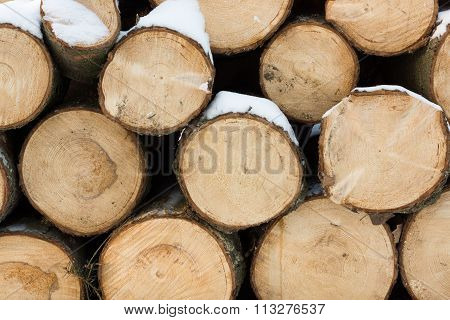 Logs Of Wood With Snow