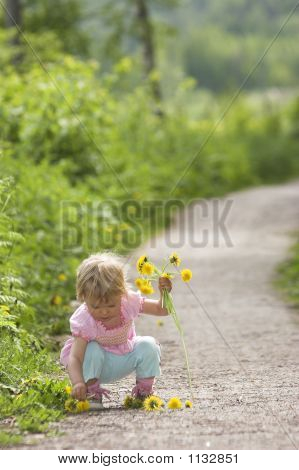 girl piking flowers summer road garden happy