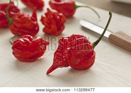Fresh red hot scorpion chili peppers