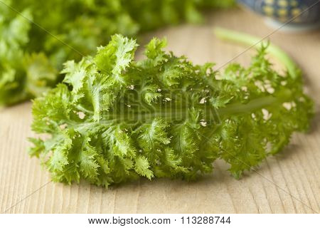 Fresh green young wasabina leaf or leaf mustard