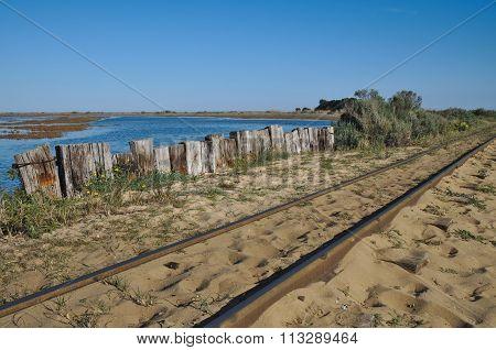 Train Tracks to the Beach
