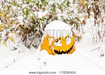 Halloween Pumpkin In The Snow