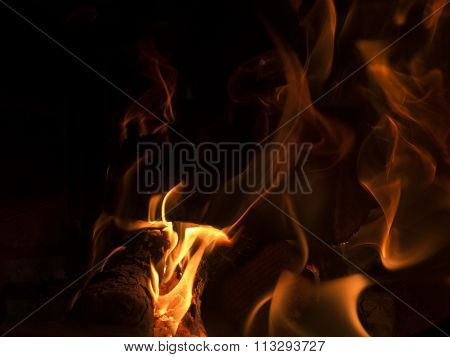 The Flames In The Fireplace, Firewood