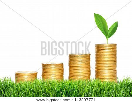 Savings, Increasing Columns Of Gold Coins And Green Plant In Green Grass