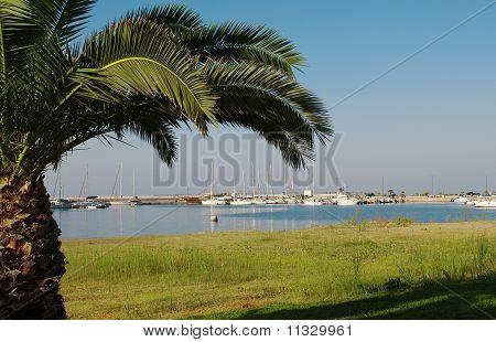 Harbor In Rethymnon