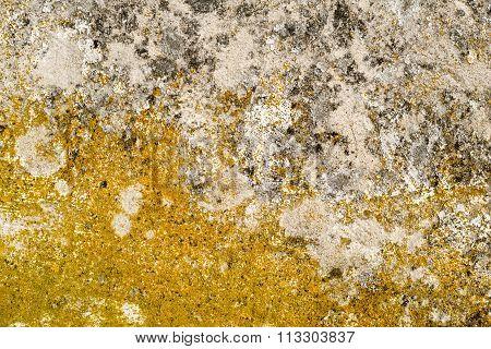 Concrete Surface