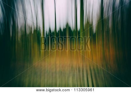 A Conceptual Photo Using Slow Shutter Speed Of Trees In A Forest Showing Green And Orange Leaves Wit