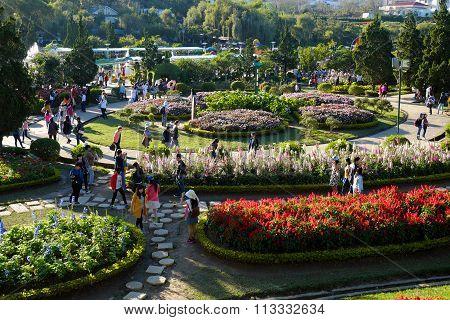 Crowded,  Dalat Flower Park, Festival, Spring, Tourist