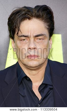 LOS ANGELES, CALIFORNIA - June 25, 2012. Benicio Del Toro at the Los Angeles premiere of 'Savages' held at the Mann Village Theatre, Los Angeles.
