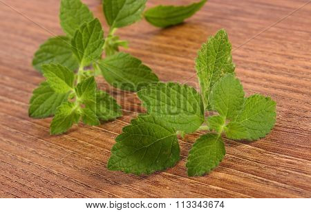 Fresh Healthy Lemon Balm On Wooden Table, Herbalism