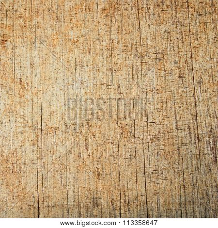 Plain Unpainted Old Plywood Texture