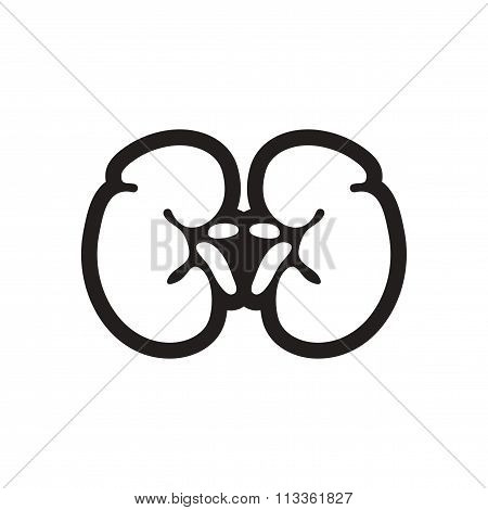 stylish black and white icon human kidney