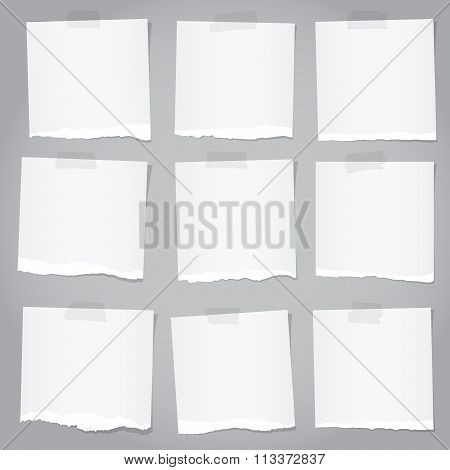 Pieces of torn gray note paper with adhesive tape