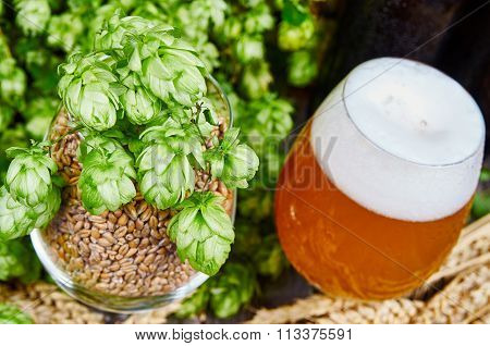 Wheat Beer And Ingredients In Glasses