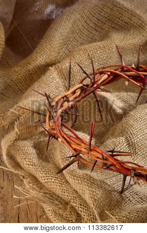 Crown Made Of Thorns Isolated