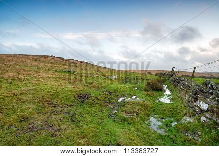 Winter On The Moors