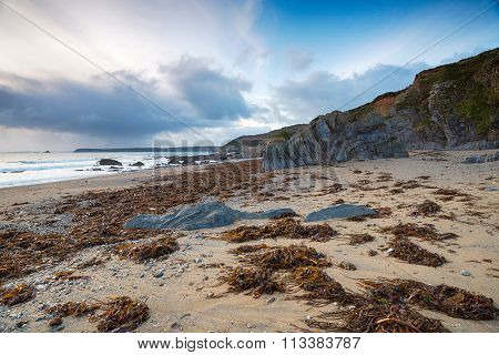 Low Tide At Hemmick In Cornwall