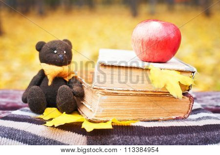 Bear, Apple And Books On A Bench