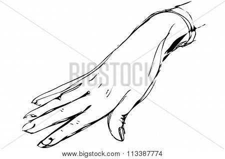 Sketch Of Women's Right Hand