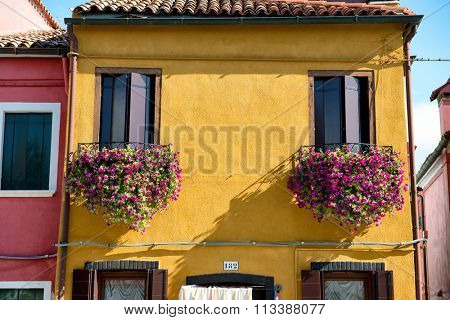 VENICE - AUGUST 27: Colorful flower boxes filled with pink flowers on a traditional brightly painted yellow fisherman's house in Burano, Venice, Italy on August 27, 2015.