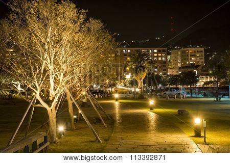 Trees and walkway