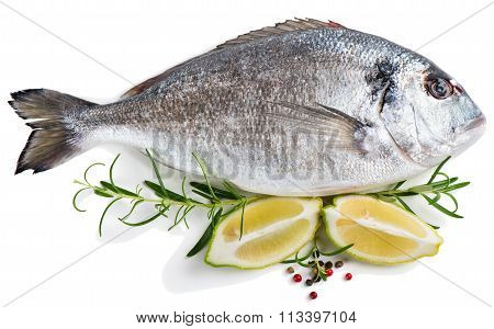Gilt-head Bream(dorada) With Spices