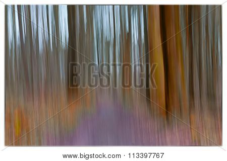 A Slow Shutter Speed Coloured Photo Of Trees In A Forest Showing Green, Orange Leaves And Lavender C