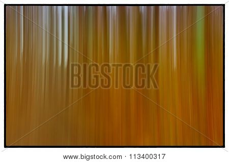 A Conceptual Photo Using A Slow Shutter Speed Of Trees In A Forest Showing Green, Orange Leaves And