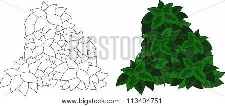 Cartoon Bush With Leaves. Coloring Book For Kids