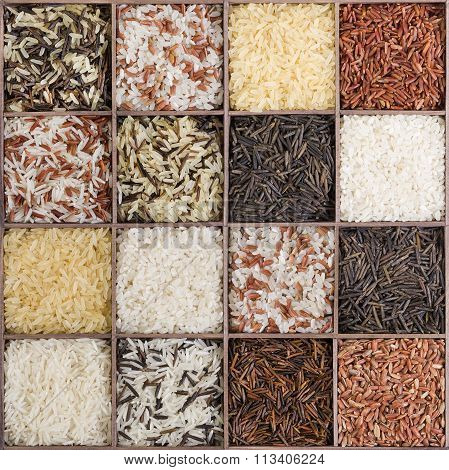 Set Of Different Types Of Rice