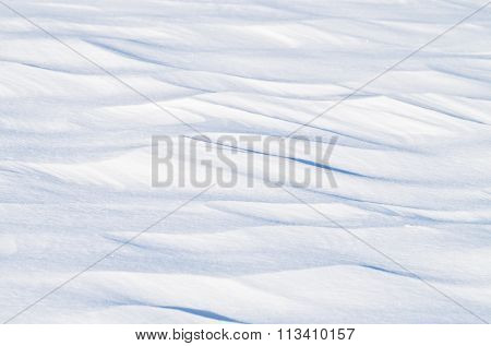 Fresh snow texture in the field