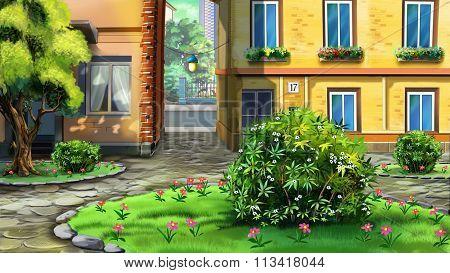 Small urban garden, courtyard.