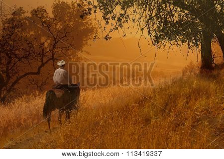 A cowboy riding on a sunset orange meadow trail with trees and long growing grasses.