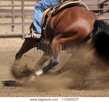 A barrel racing horse.