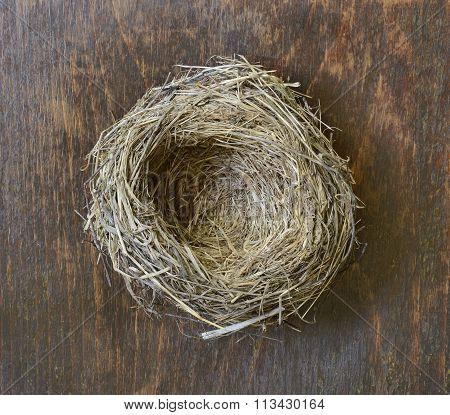 Bird's Nest.