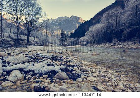 Frozen river bank.