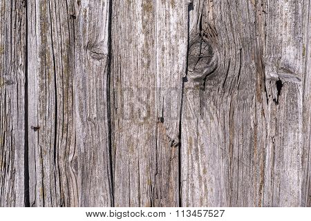 Texture Of The Old Decayed Wooden Boards